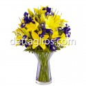 Lilies e iris
