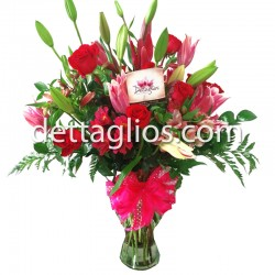 Rosas y Stargeiser