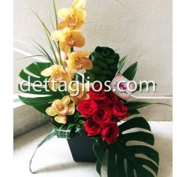 Orquidea y Rosas
