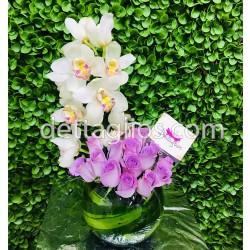 Orquídea con 24 rosas