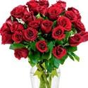 -Flores