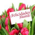 -Día de las Madres